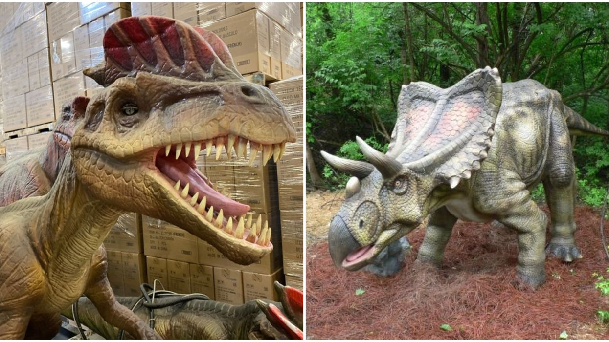 Dinosaurs For Sale In BC: Over 50 Giant Robot Dinosaurs Are Being Auctioned Next Month
