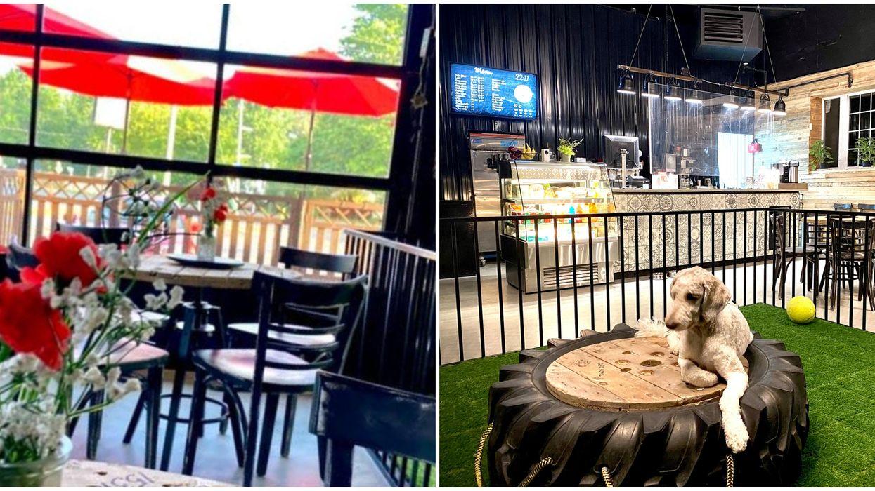 Un tout premier café canin vient d'ouvrir ses portes à Laval