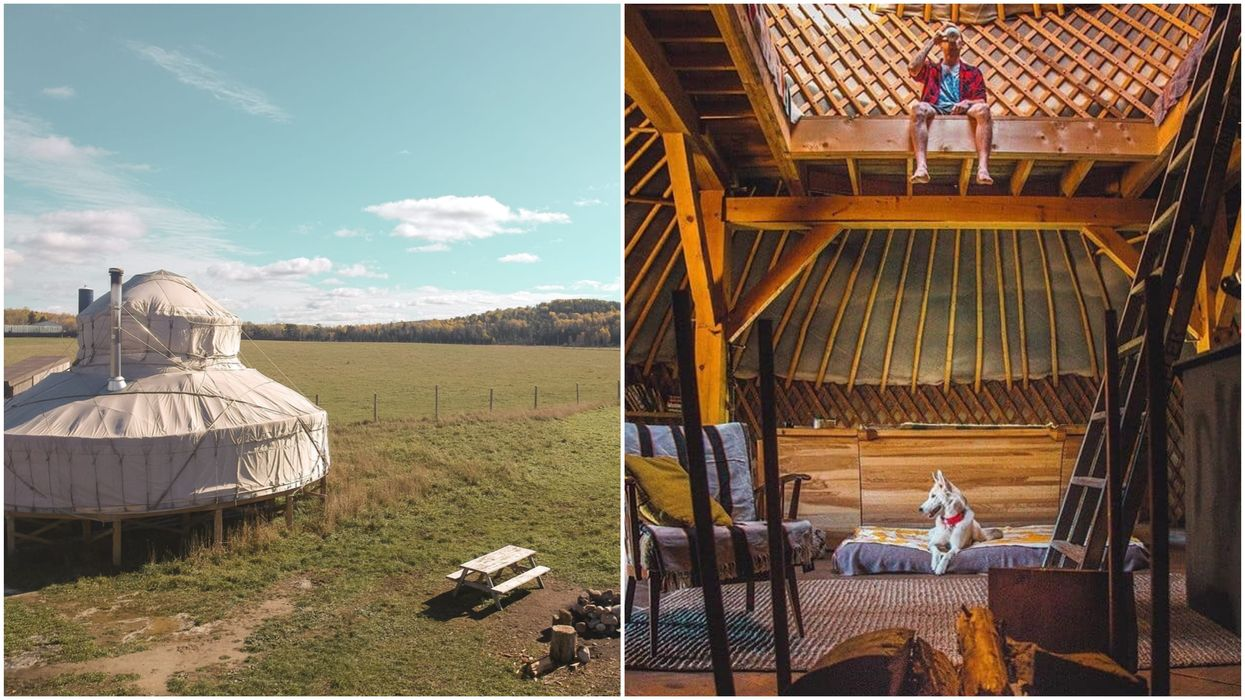 Unique Airbnb Near Ottawa Offers The Chance To Sleep Surrounded By Wild Buffalo (PHOTOS)