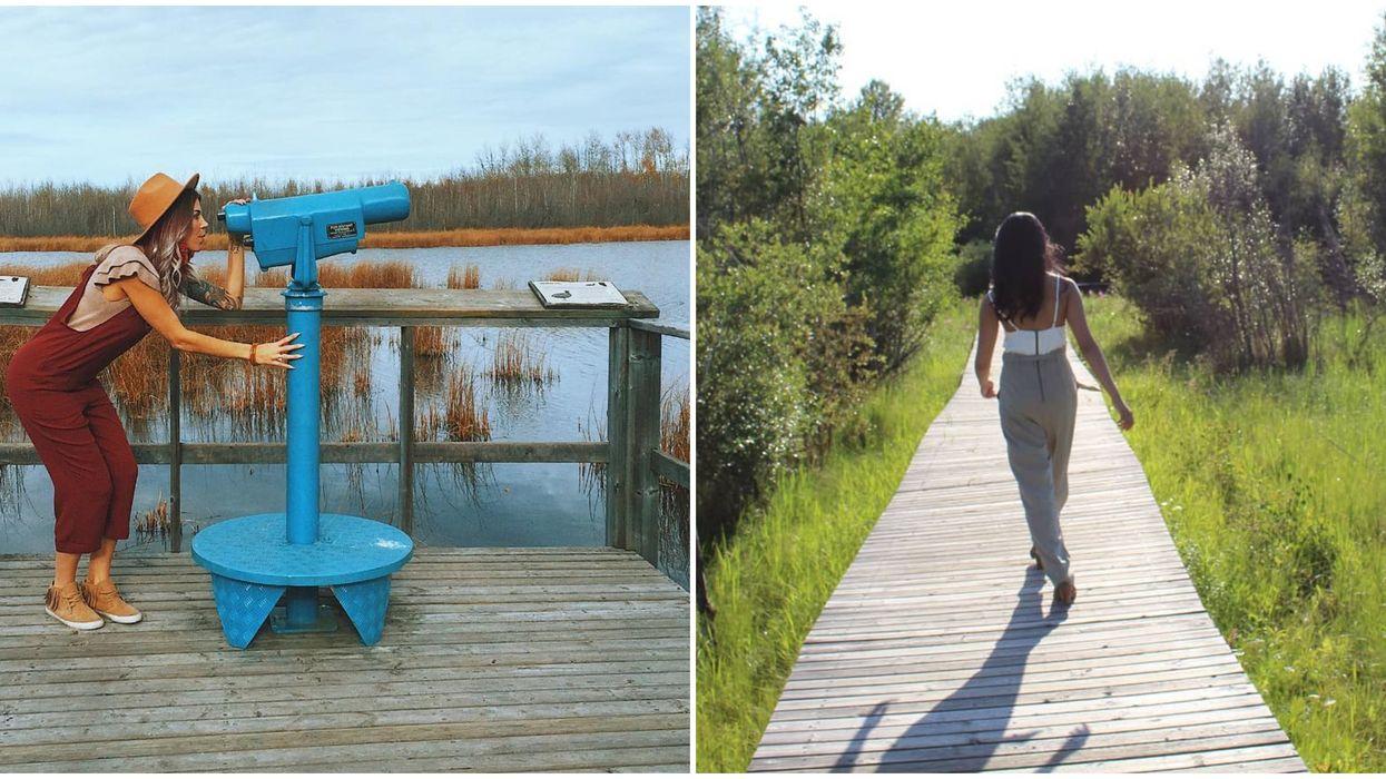 Edmonton's Boardwalk Trail Is A Hidden Gem Worth Finding This Summer