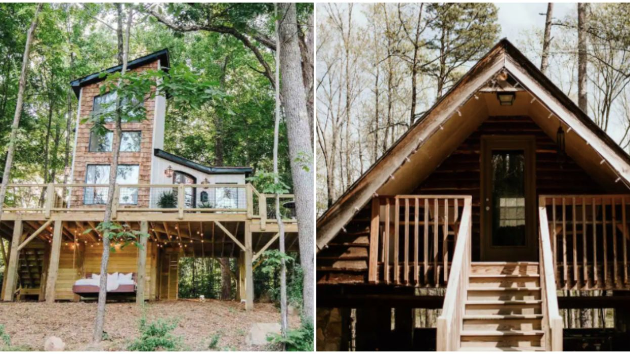 North Carolina Airbnbs Near Charlotte Cabins That Are Perfect For The Fall Season