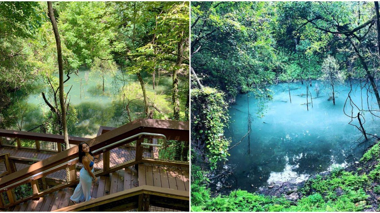 Devil's Millhopper Geological State Park Contains An Ancient Rainforest