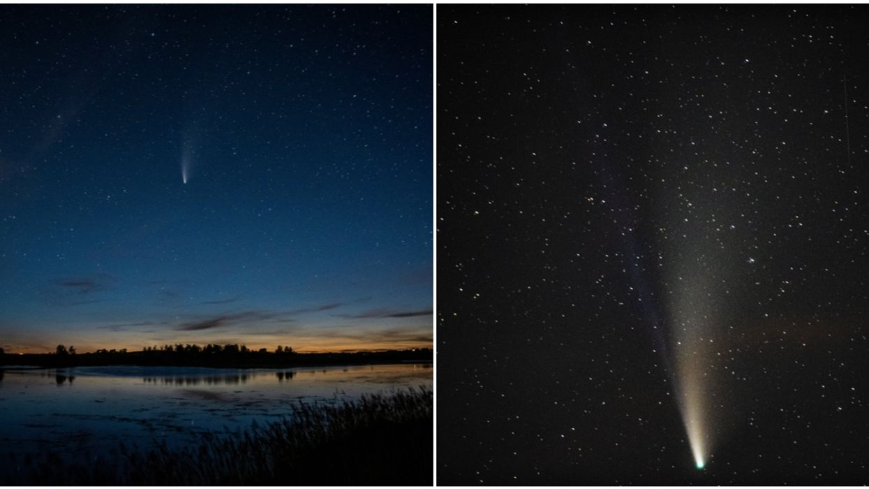 The NEOWISE Comet Will Be Epic Tonight Over Calgary & Here's How You See It
