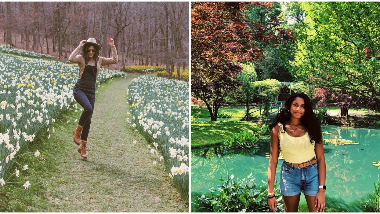 Gardens Throughout Georgia In Bloom That You Can Visit Right Now