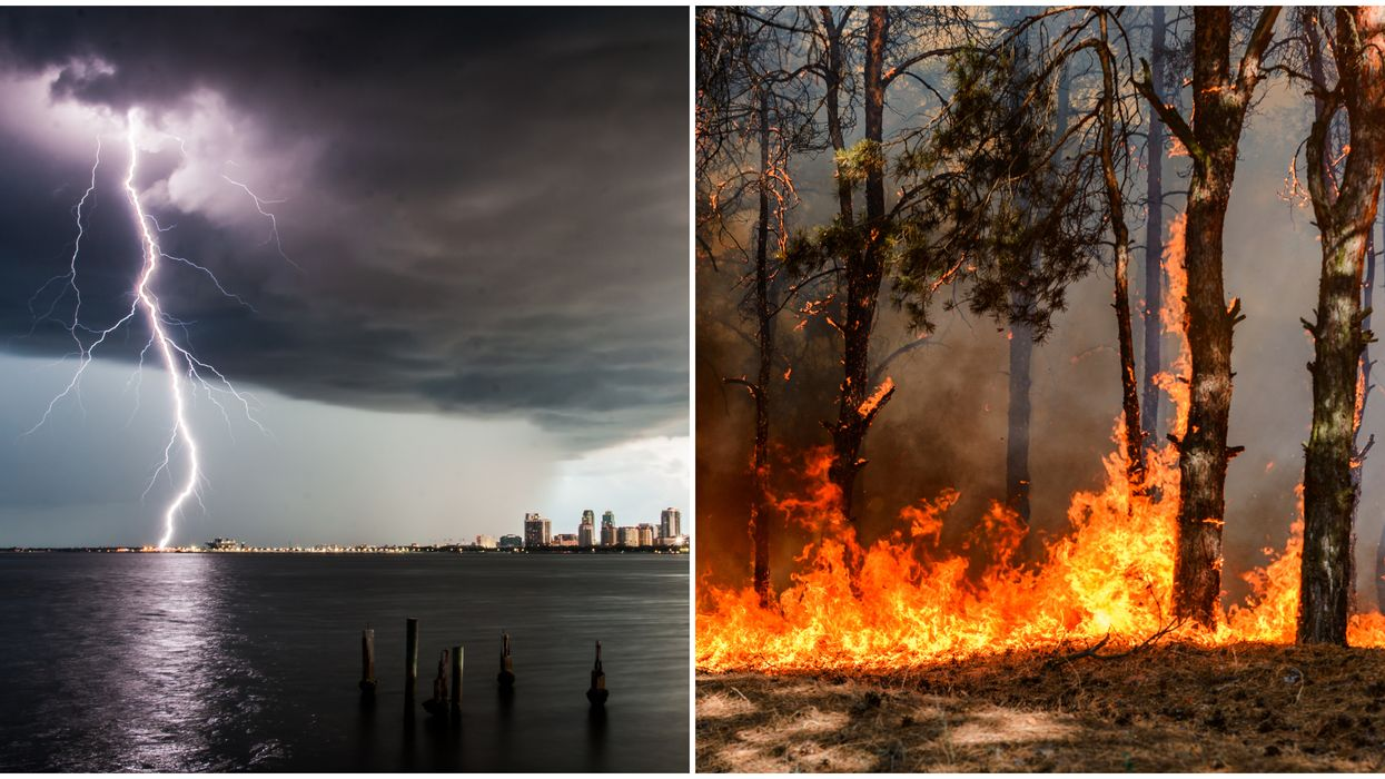 Florida Weather Forecast East Coast At Risk Of Fire Weather With Dangerous Lightning