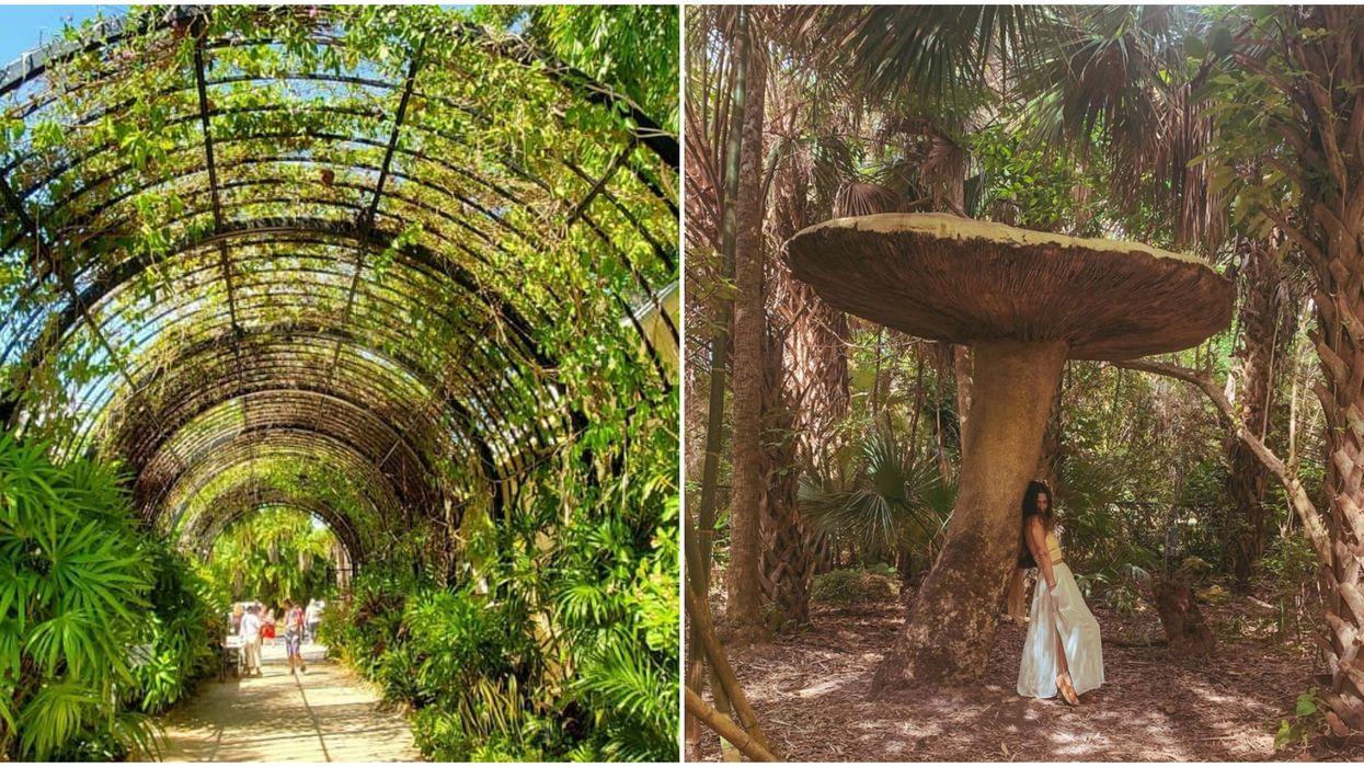McKee Botanical Garden Florida Has Major 'Alice In Wonderland' Vibes