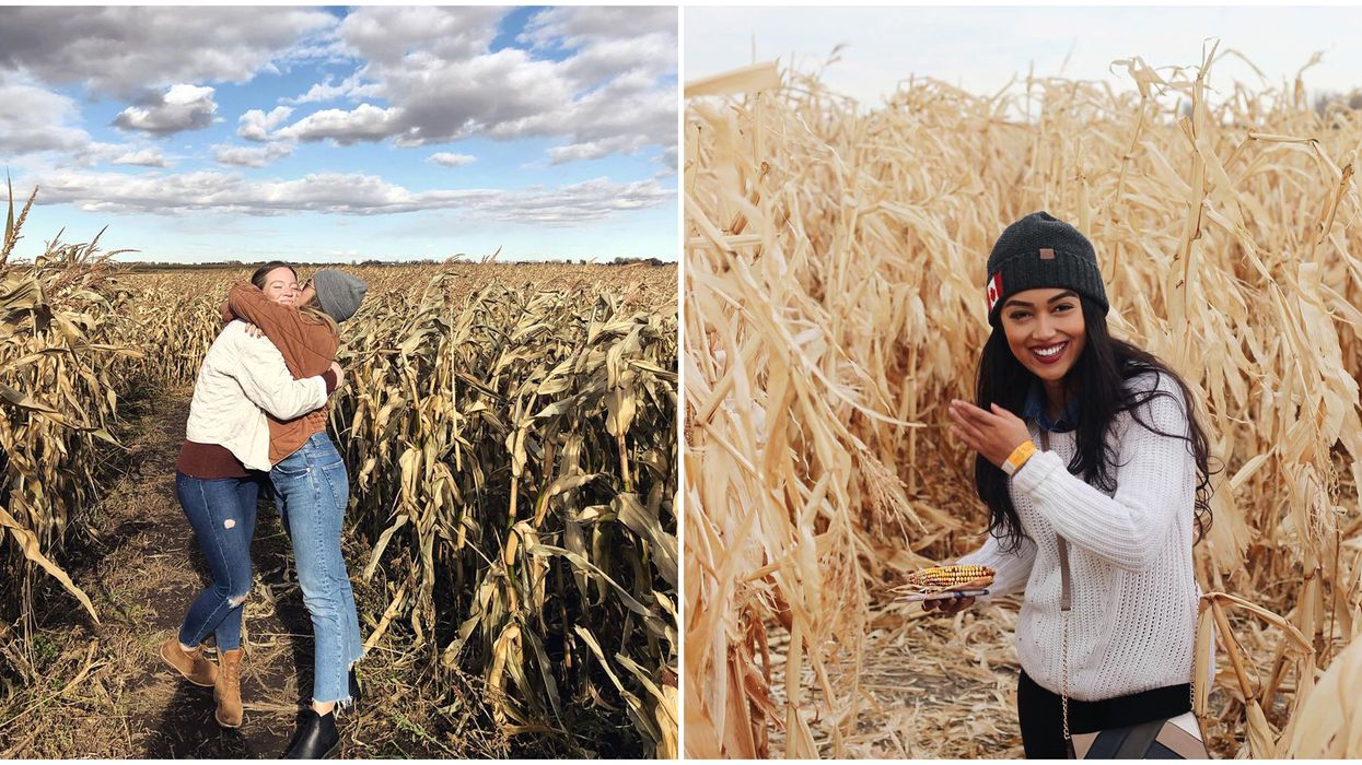 Calgary's Largest Corn Maze Is 11-Acres Of Fun This Summer