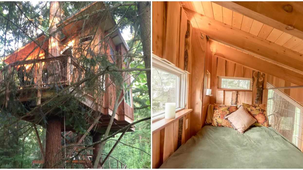 Redmond Airbnb Is An Actual Treehouse That Lets You Sleep In The Sky
