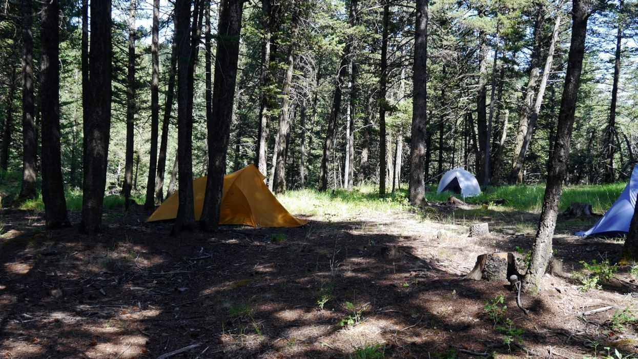 Campers In Alberta Are Pitching Tents Anywhere Including Ditches