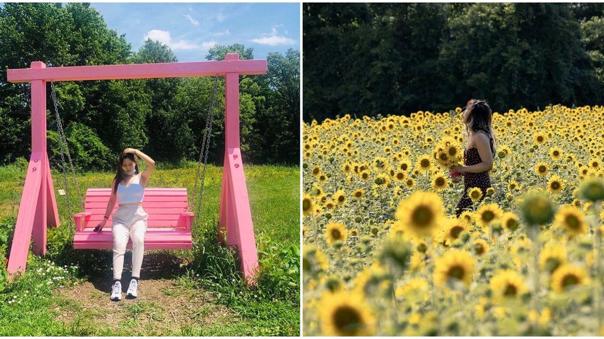 Toronto's Lochland Botanical Flower Farm Is Like Stepping Into A Fairytale