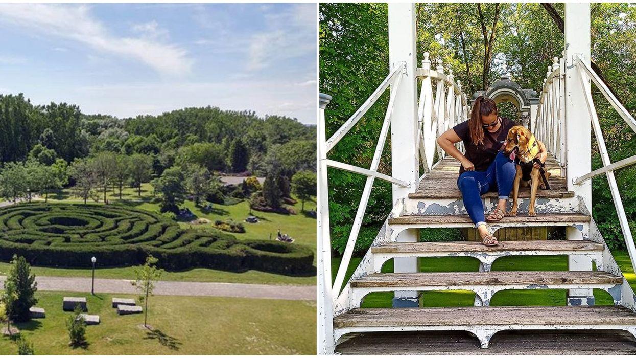 Le labyrinthe du Domaine de Maizerets à Québec est l'endroit idéal où te perdre