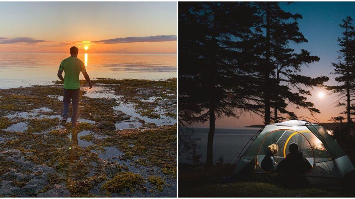 L'île d'Anticosti sur la Côte-Nord est une véritable destination de rêve au Québec