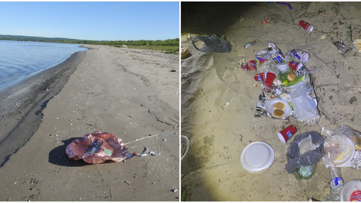Littering At Ontario's Provincial Parks Is On The Rise & Staff Can't Keep Up