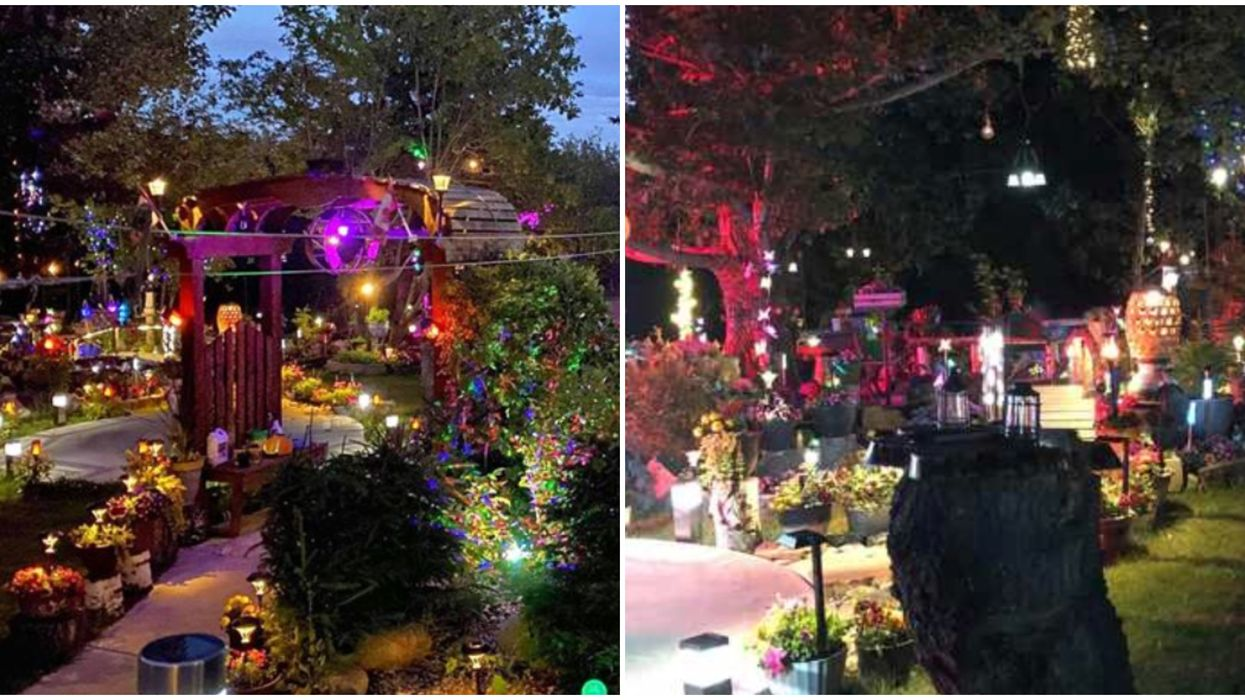 An Edmonton Man's Stunning Backyard Light Show Is Now Open For You To Visit