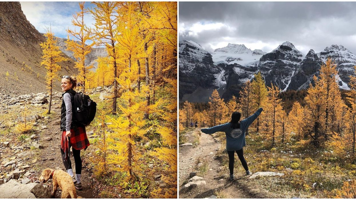 8 Hikes Near Calgary That Are Way More Beautiful In The Fall