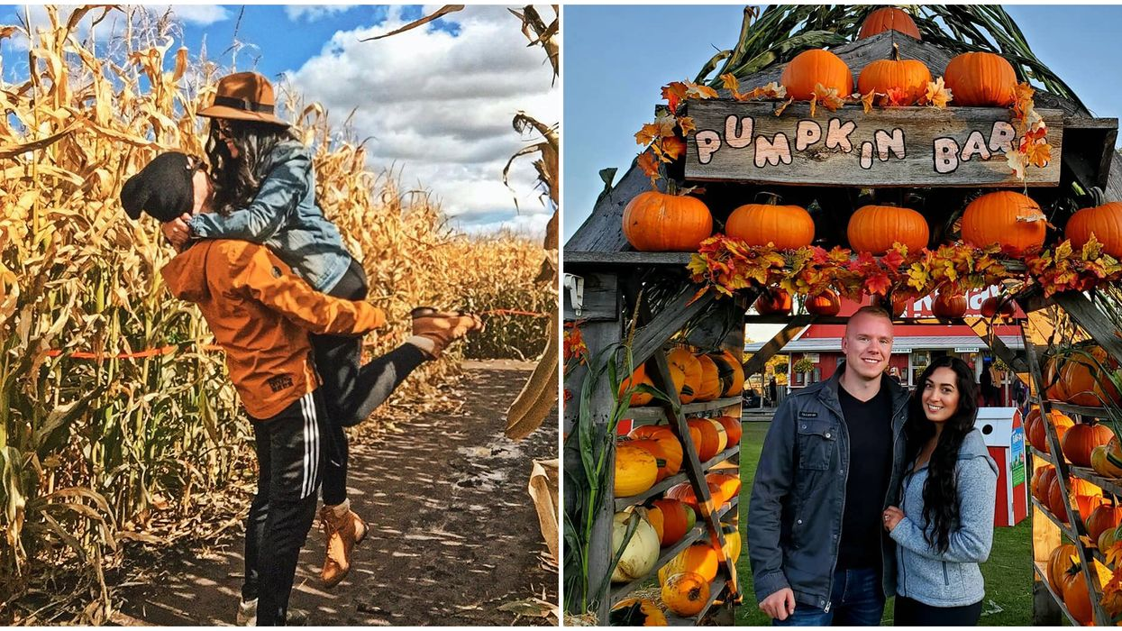 7 Date Ideas In Edmonton For You & Your Favourite Person This Fall