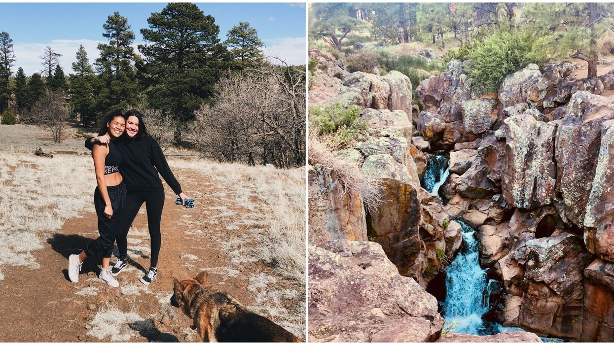Picture Canyon Preserve In Flagstaff Has Hidden Petroglyphs & A Waterfall