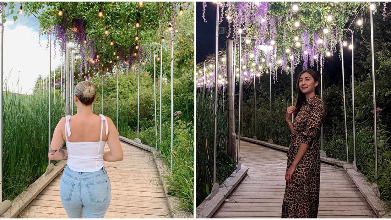 Ontario's Floral Canopy Boardwalk Will Make You Feel Like You're In A Fairytale