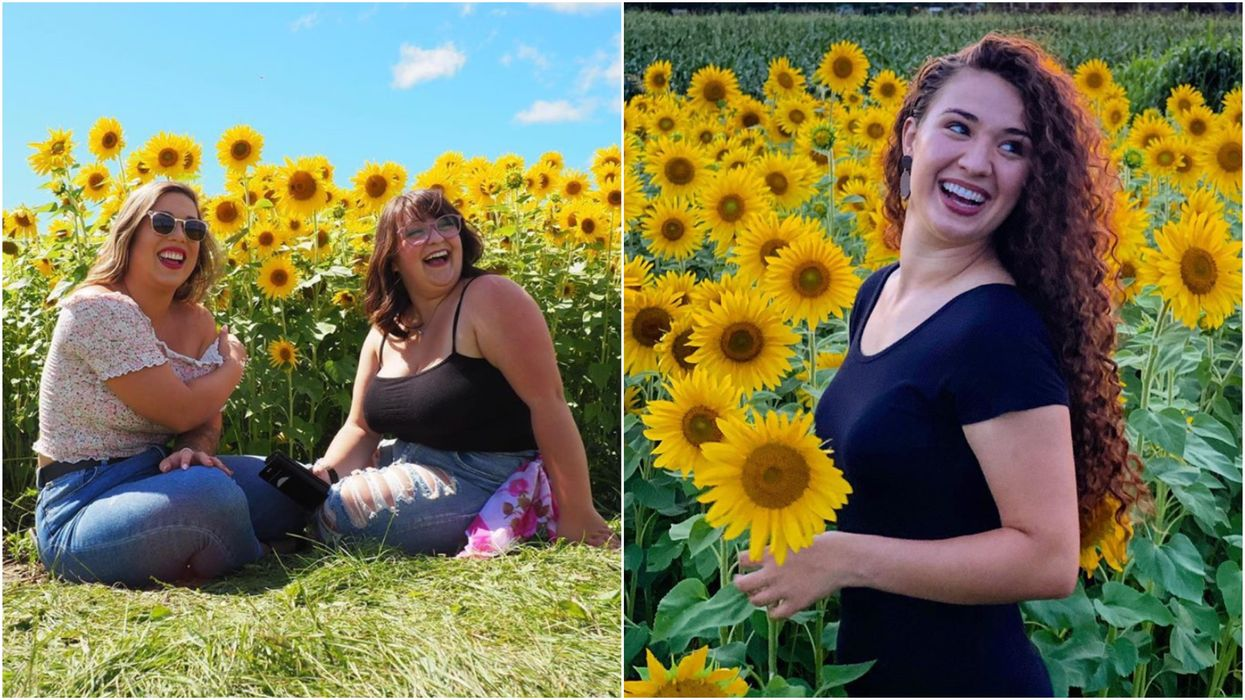 Ottawa's Sunflower Field Is In Full Bloom Right Now & It Looks Extra Dreamy