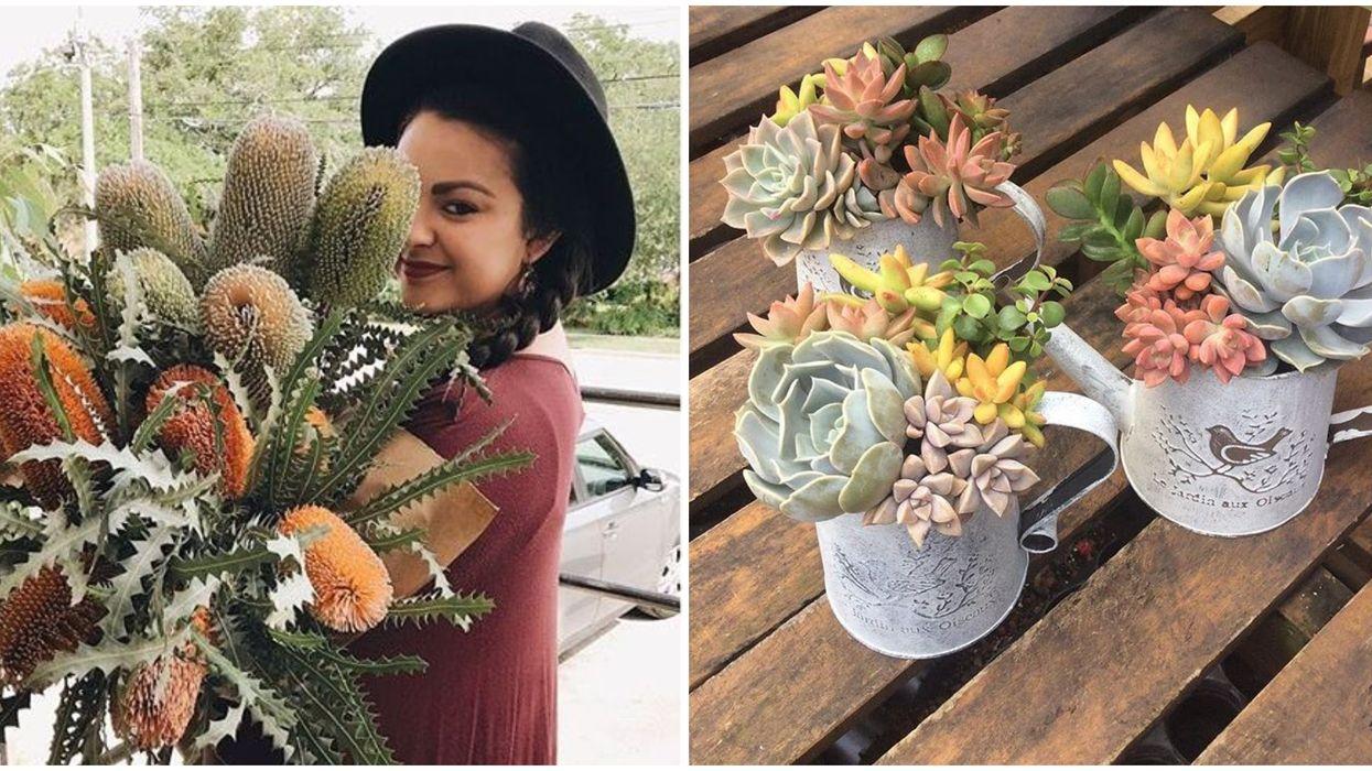 Florida Garden Cactus Shop Open Now