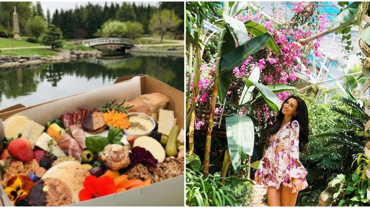 U of A Botanic Garden's After-Hours Picnic Is The Most Enchanting Date Night