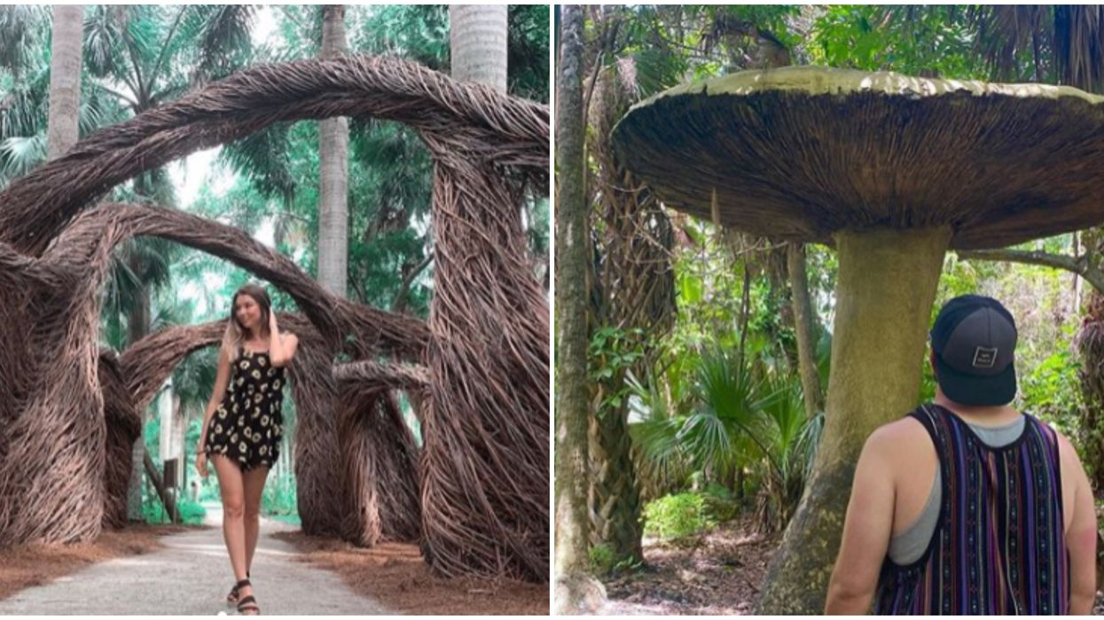 McKee Botanical Gardens Miami Is A Whimsical Wonderland You Can Visit For Cheap