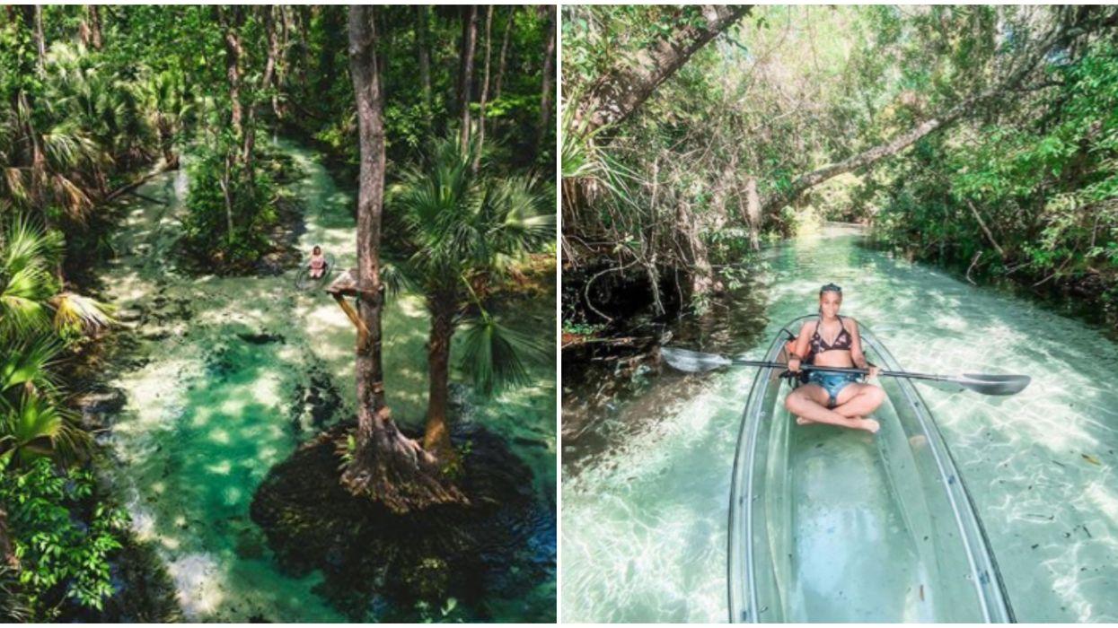 Florida Clear Kayak Tour Near Orlando Takes You Through An Amazon Oasis