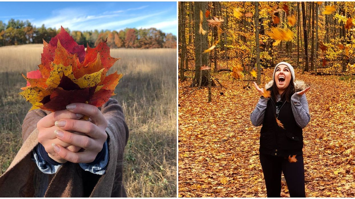 This Ontario Parks Interactive Map Lets You Know When The Leaves Will Change Colour