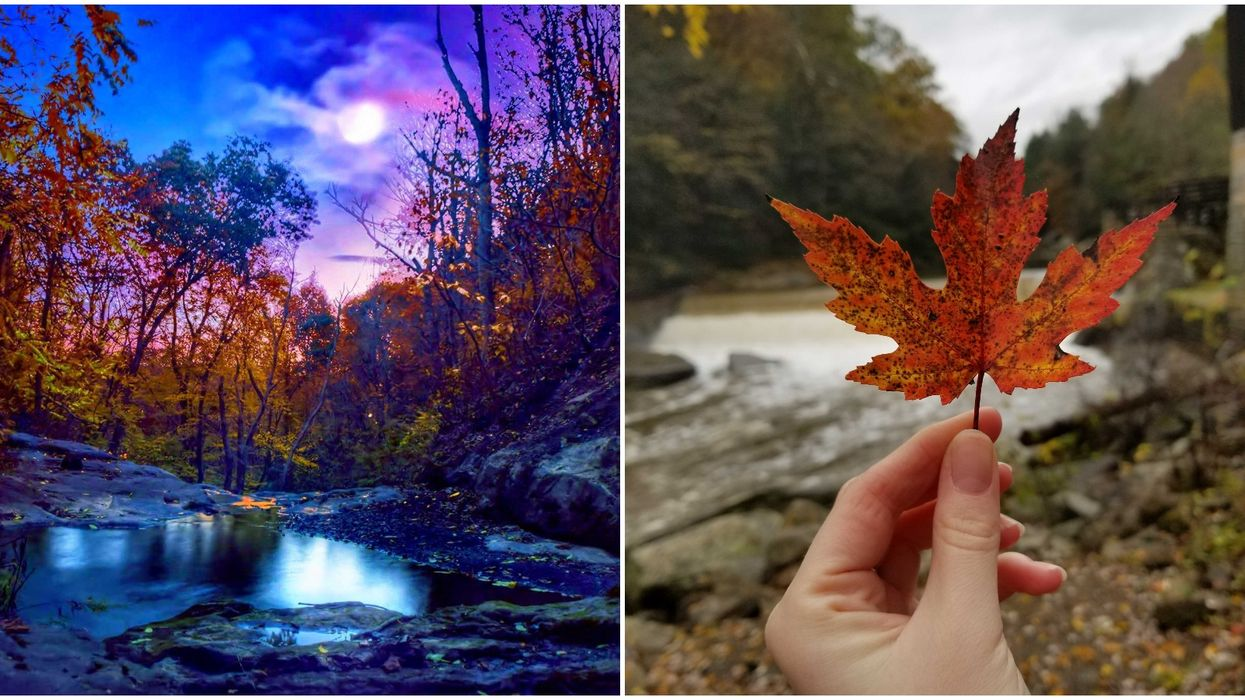 This Interactive Map Of The USA Will Help You Plan Your 2020 Fall Foliage Adventures