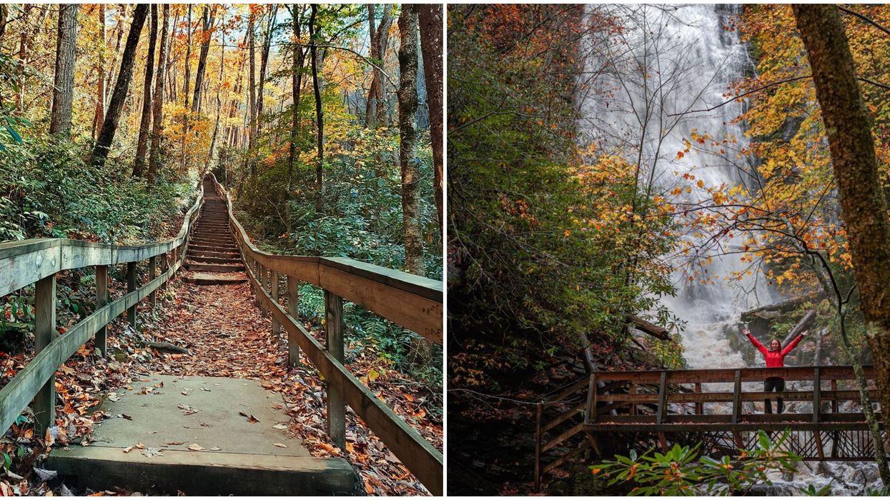 North Carolina Waterfall Hike Mingo Falls Will Satisfy Your Wanderlust