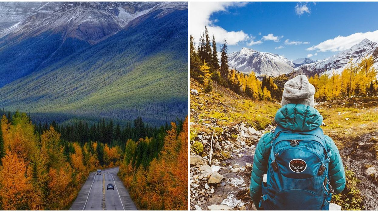 9 Road Trips Around Alberta That Will Give You All The Spectacular Fall Views