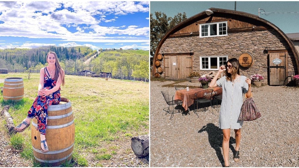 Alberta Winery Has 'Flower Wine' & You Can Taste It All For Only $5