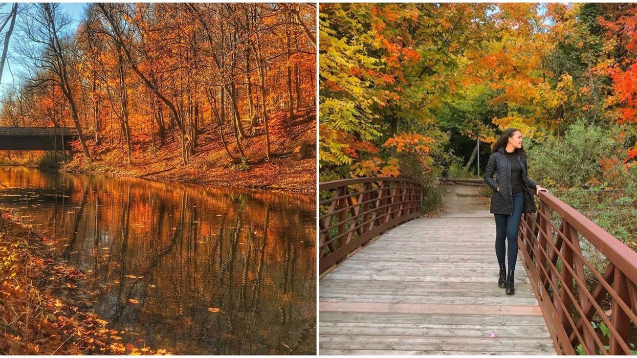 Mill Pond Near Toronto Has The Most Gorgeous Fall Trails