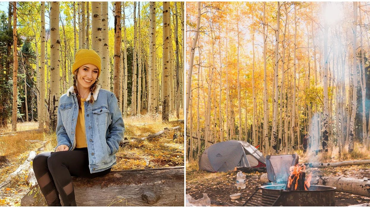 Lockett Meadow Campground In Flagstaff Turns Into A Topaz Dream Every Fall