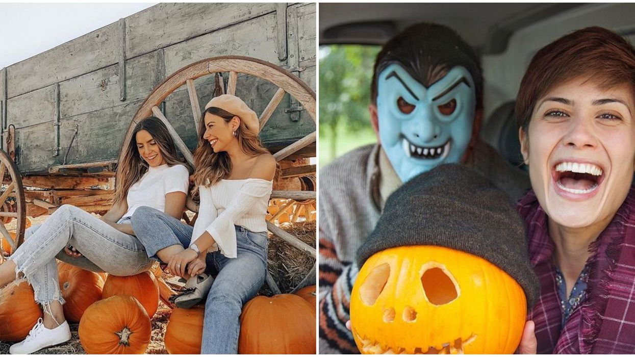 Drive-Thru Pumpkin Patch Miami Not So Spooky Is Happening This Month