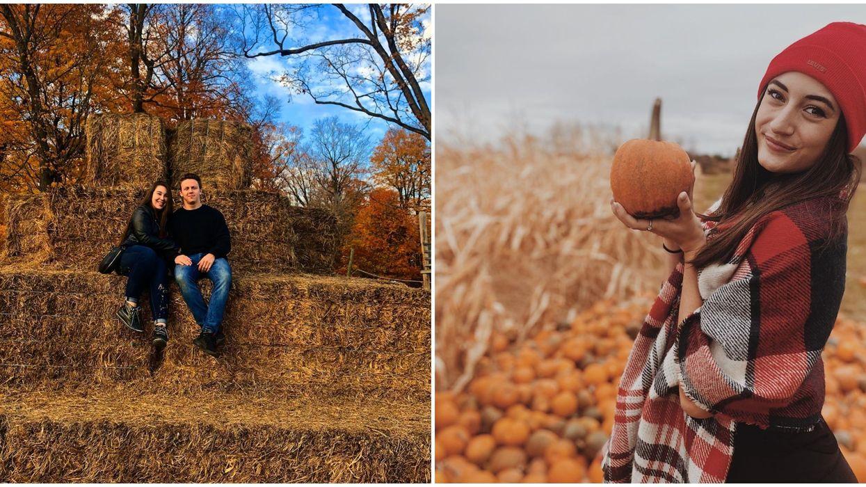 This Farm Near Ottawa Is Transforming Into A Giant Pumpkin Playground This Week