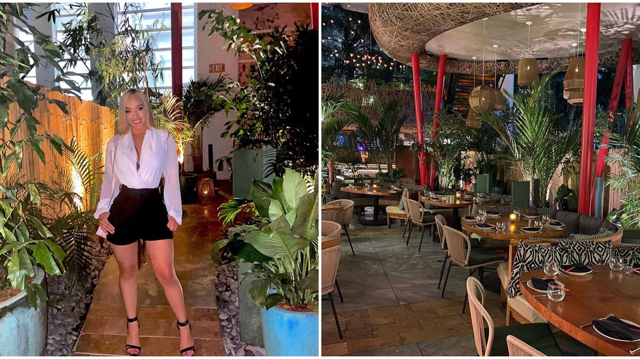 Asian Food Miami Restaurant Komodo Serves Up Good Eats With Magical Indoor Jungle Vibes