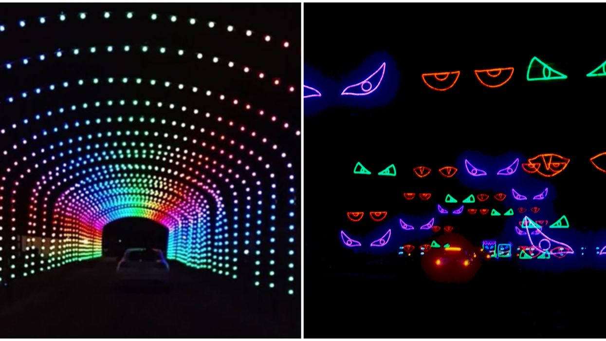 Toronto's Halloween Nights Of Lights Will Take You Through A Spooky Glowing World
