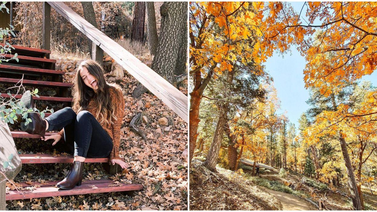 Big Bear Lake In California Is The Perfect Fall Escape