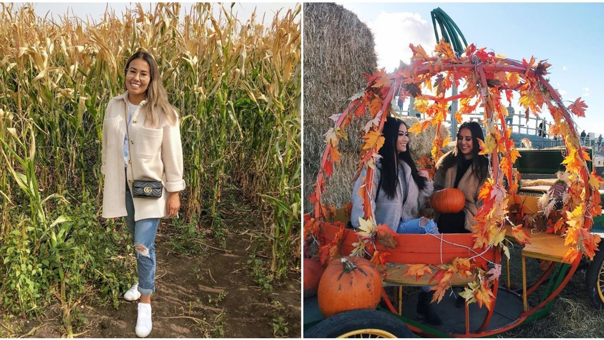 Calgary's Nighttime Corn Maze Is The Most Magical Way To Experience Fall