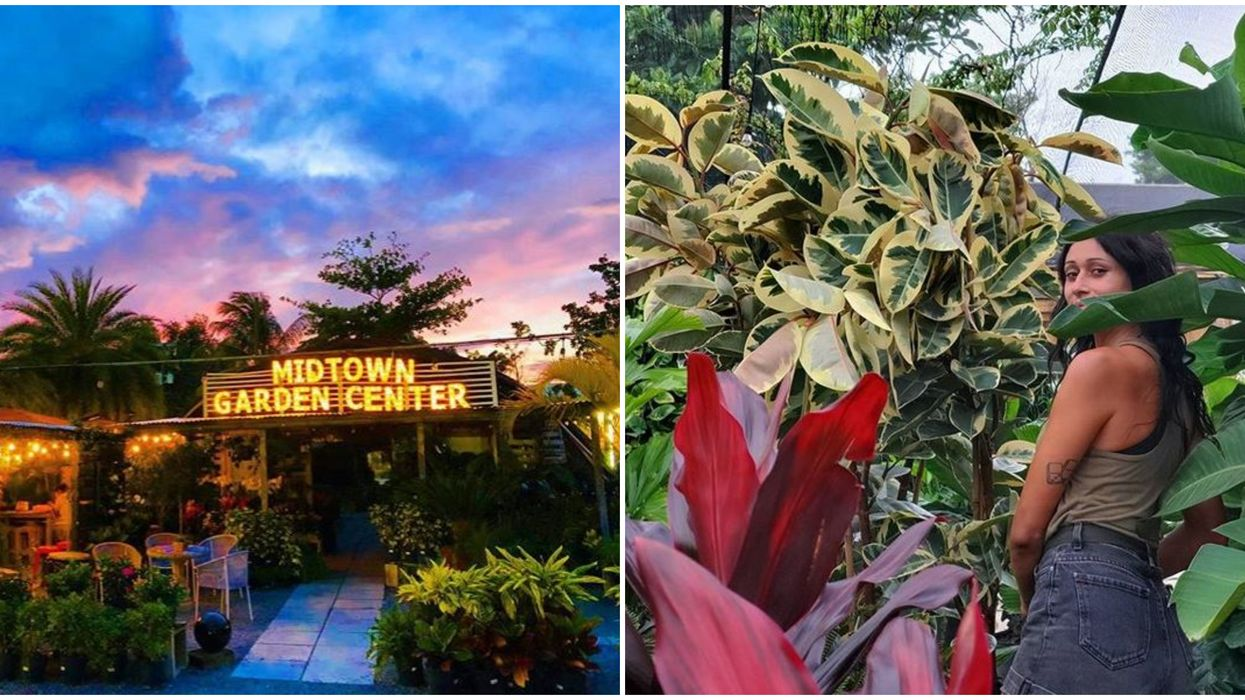 Miami Hidden Gem Midtown Garden Center Is An Urban Jungle In The Middle Of The City