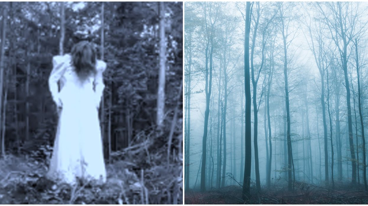Ontario's Haunted Forest Escape Game Is Like Being In 'The Blair Witch Project'