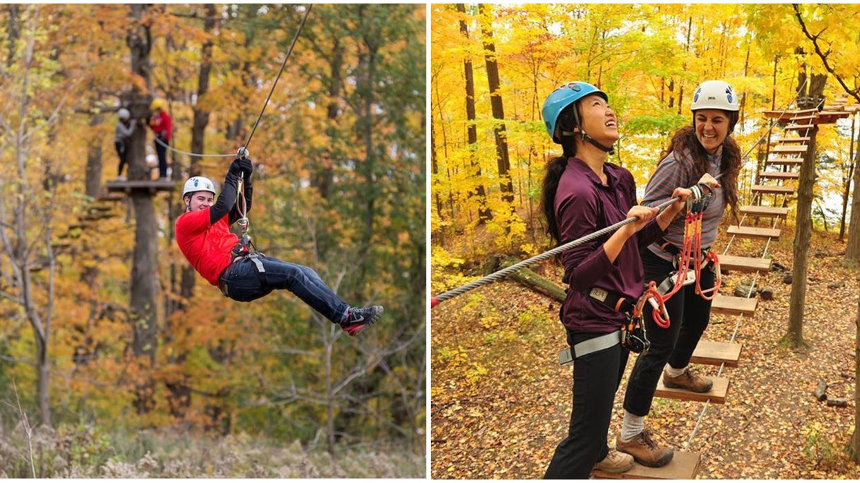 Ontario's Treetop Walks Are The Perfect Way To Enjoy Fall Colours