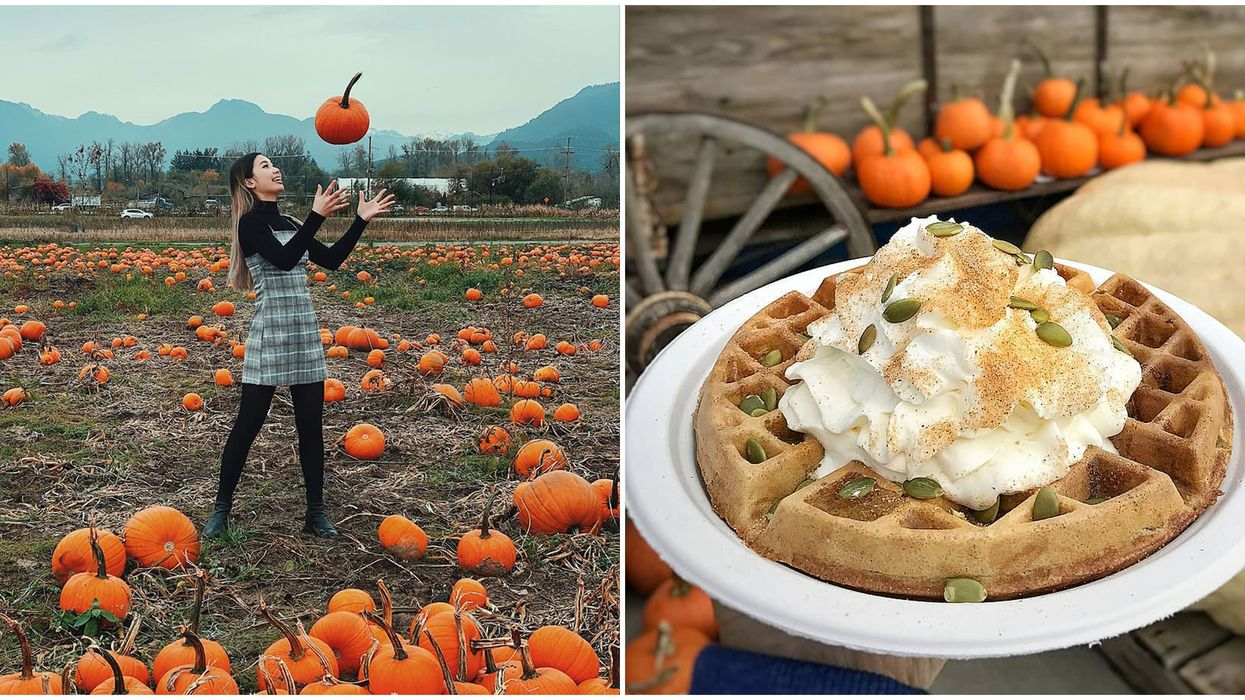 8 Things To Do In Vancouver This Weekend, October 2 to 4