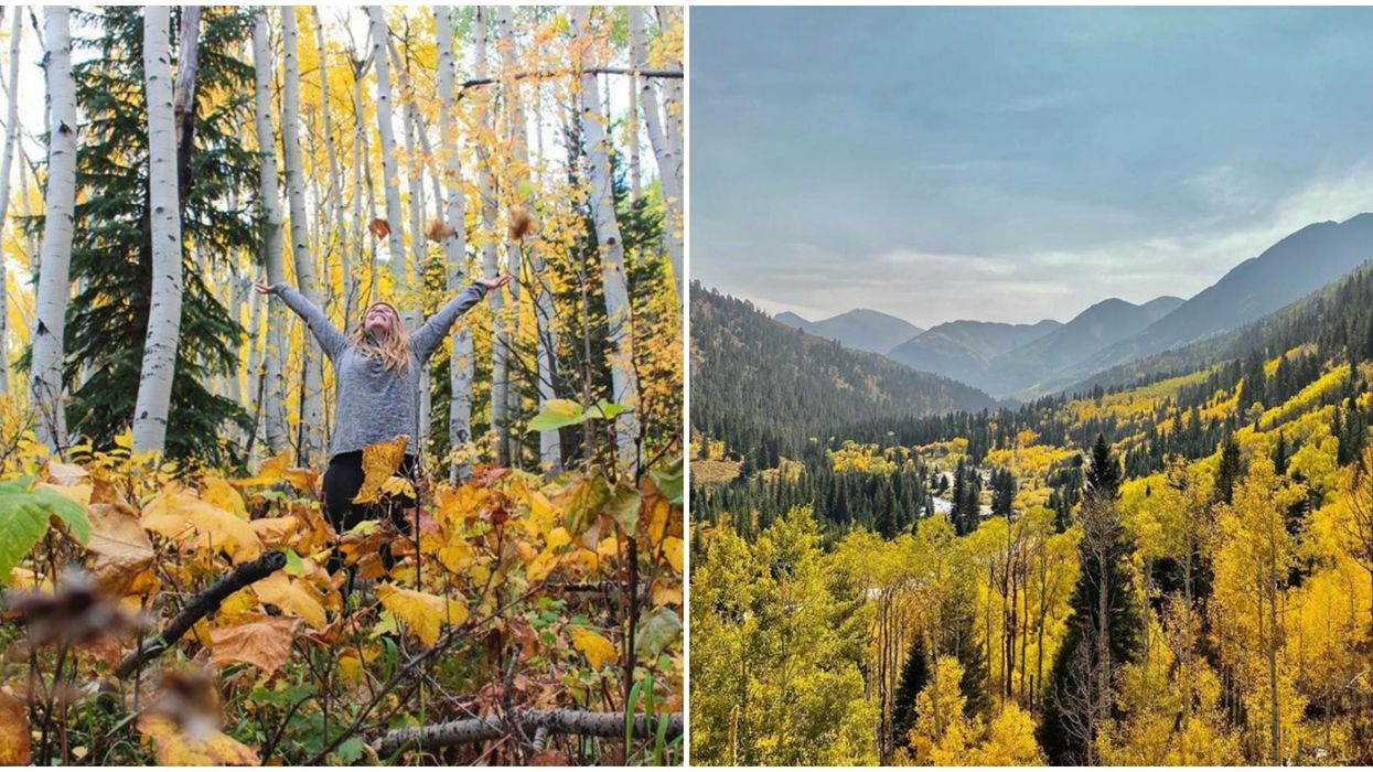 Autumn In Colorado Is The Most Scenic Time Of The Year