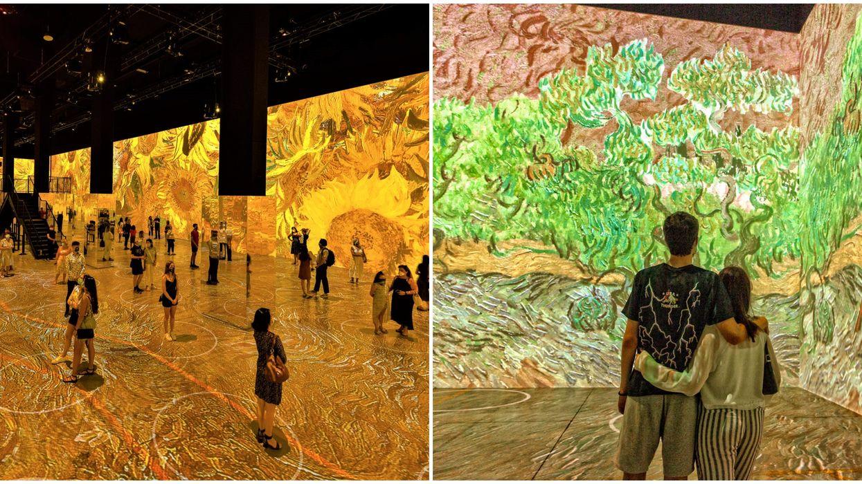 Toronto's Immersive Van Gogh Experience Isn't Gogh-ing Anywhere Yet