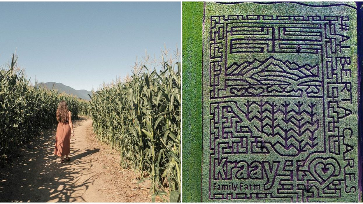 Corn Mazes In Canada That Are Perfect Places To Get Lost In This Fall
