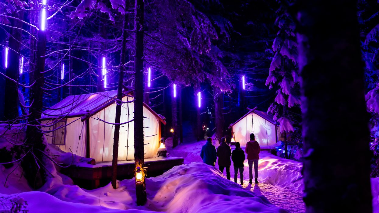 Whistler Light Walk Is A Magically Illuminated Forest Path Opening This Winter In BC