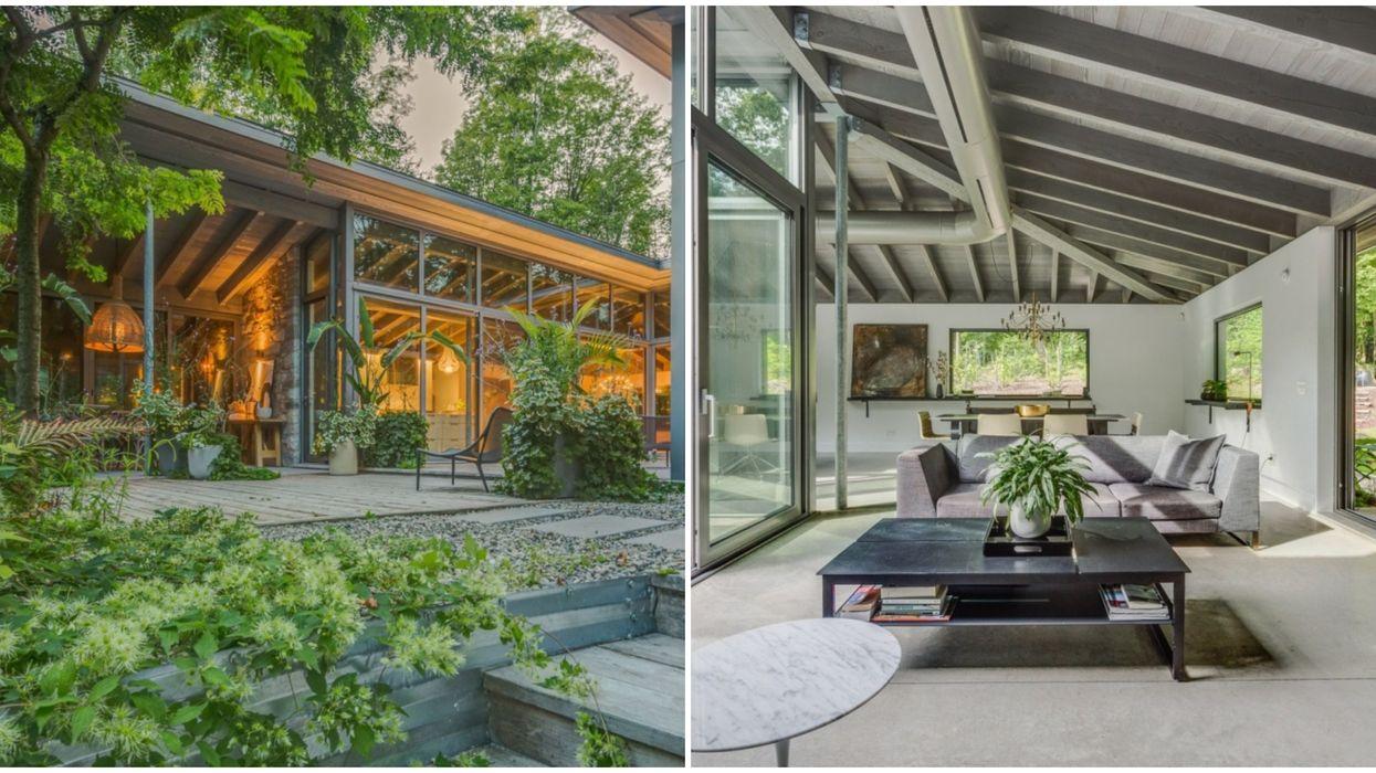 Maison à vendre à Bromont qui donne l'impression d'être en pleine jungle