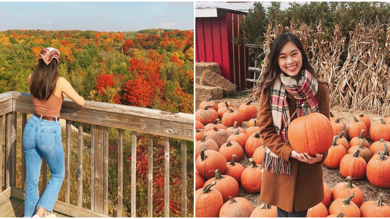 Quiet Places Near Toronto You Can Visit With Your Presto Card This Fall